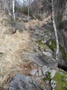 Fra stien opp fra Blåfjellveien