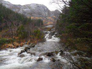 Mye vann i elva