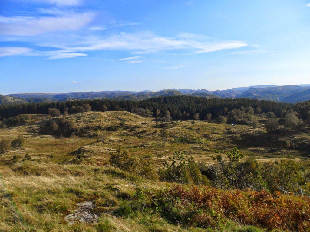 Utsikt over Frøylandsheia fra Krossåsen