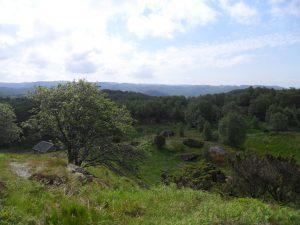 Utsikt mot sør-vest fra en ås ovenfor hytta