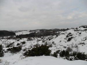 Utsikt mot Rossland