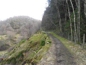 Veien opp Kalveskaret