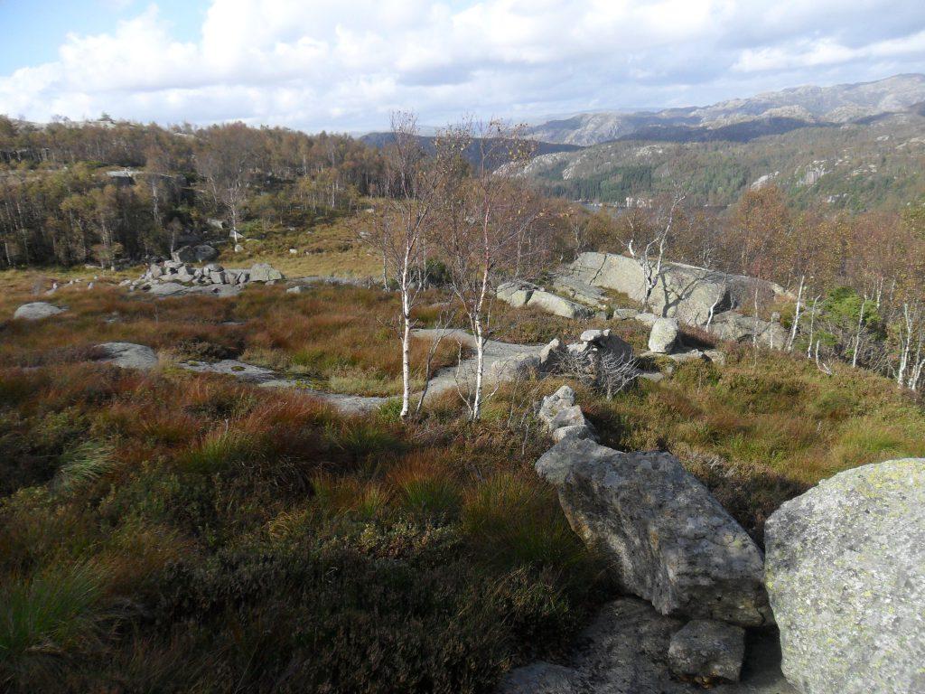 Grensen mellom Håland og Myssa