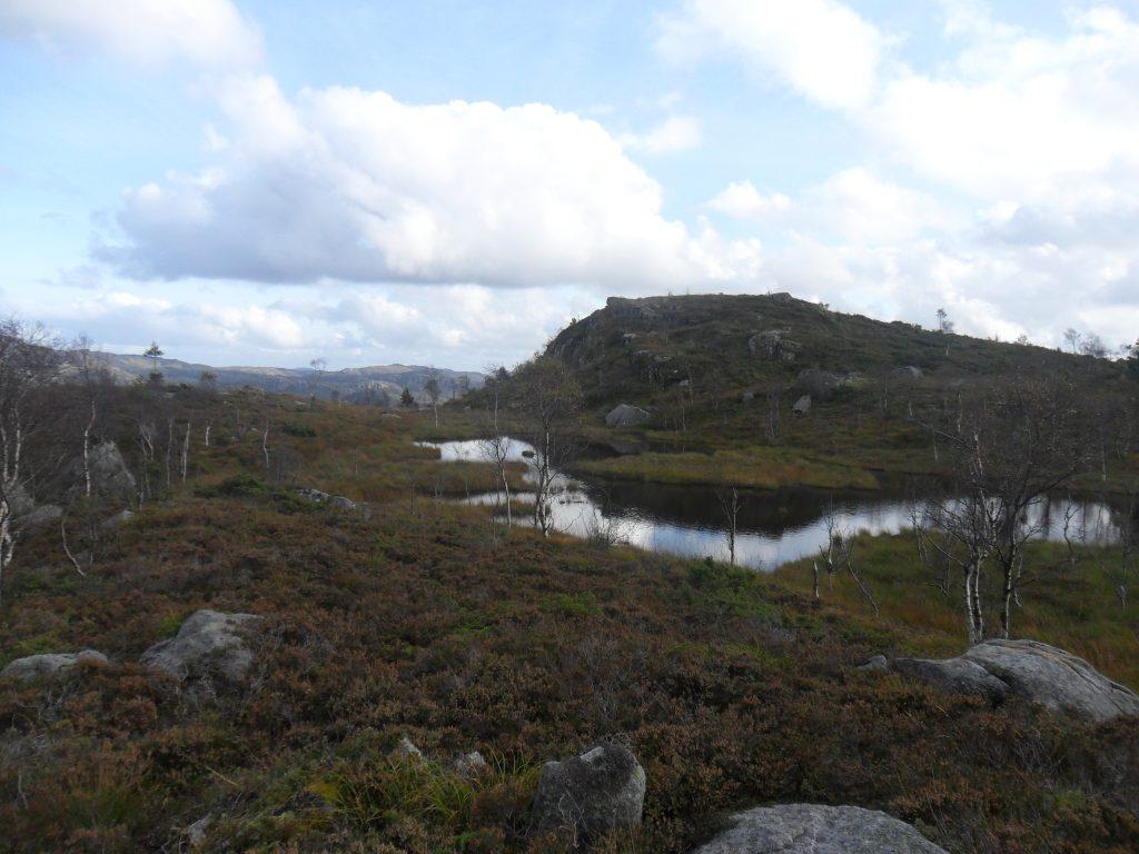 Fra Grøndasheia. Snart hjemme på Håland