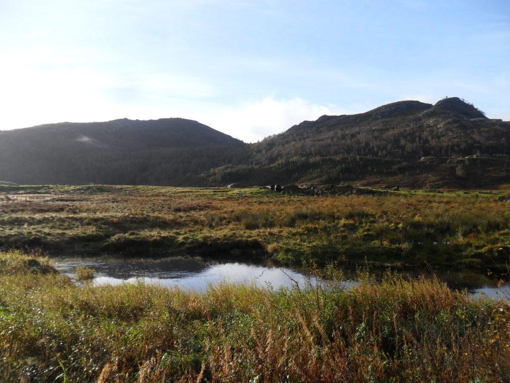 Moldalen midt i bildet