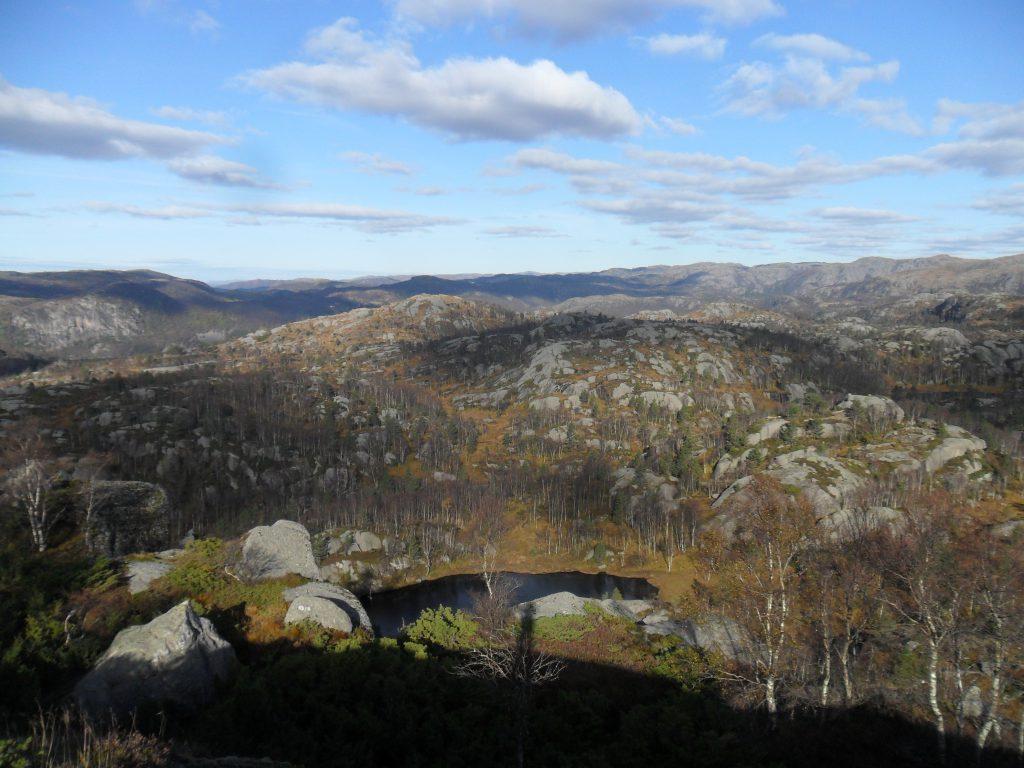 Mot Håland